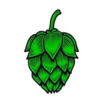 Illustrazione del luppolo della birra. elemento di design per logo, etichetta, segno, poster, carta, banner, volantino. illustrazione vettoriale