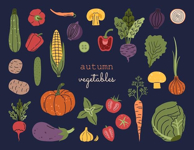 Grandi verdure del raccolto autunnale, set di zucca fresca, pomodori, mais, pepe, illustrazione a mano libera in stile doodle moderno
