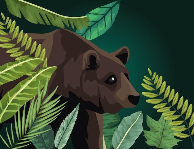 Grande orso animale nella scena del paesaggio