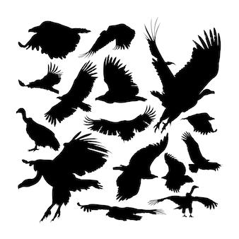 Grandi sagome di animali avvoltoio grifone