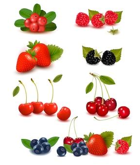 Grande gruppo di frutti di bosco freschi illustrazione