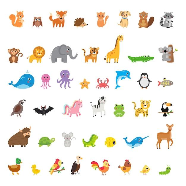 Grande insieme di diversi animali e uccelli in stile cartone animato