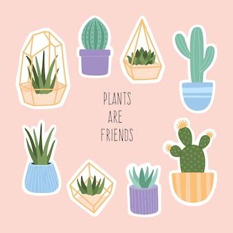 Set di grandi adesivi di illustrazione di piante grasse disegnate a mano carina