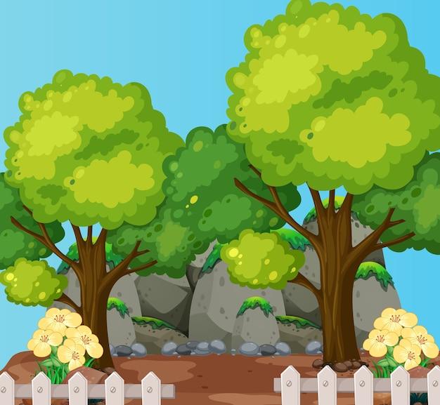 Grandi alberi con grande scena naturale di pietra
