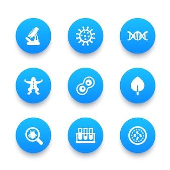 Set di icone di biologia, divisione cellulare, microscopio, provetta, microbo, microrganismo
