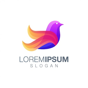 Modello di logo di colore dell'uccello