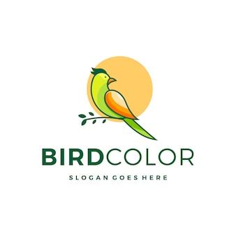 Uccello colorato logo design ispirazione