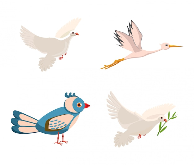 Set di elementi di uccello. cartone animato di uccello
