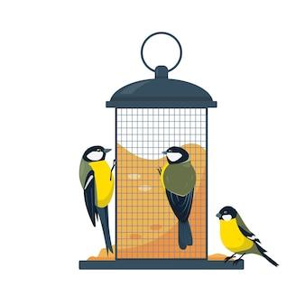 Mangiatoia per uccelli con mangiare uccelli tette isolati su sfondo bianco
