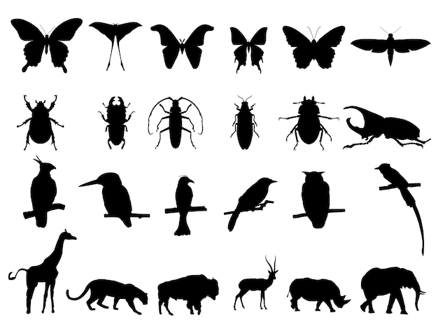 Uccello, insetto e fauna selvatica Vettore Premium