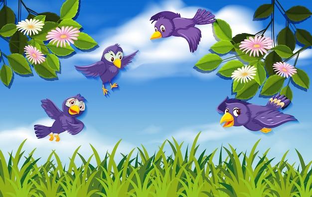 Uccello nel fondo della natura