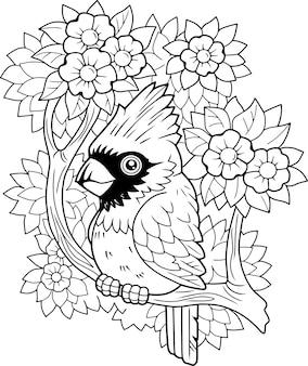 Cardinale uccello rosso