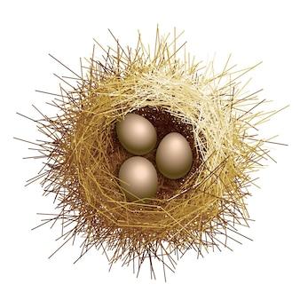 Nido di uccelli con illustrazione di uova