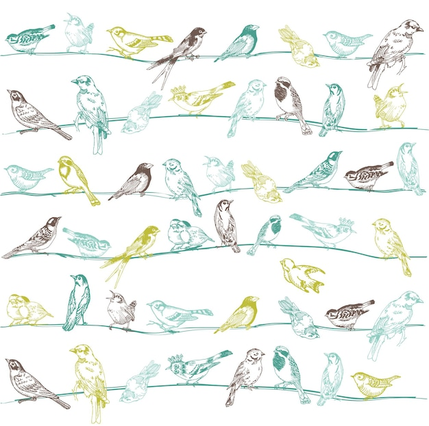 Seamless pattern di uccelli