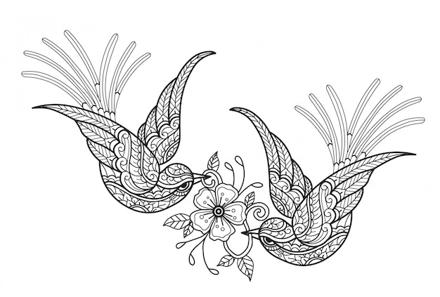 Uccelli con il fiore illustrazione disegnata a mano di schizzo per il libro da colorare adulto.