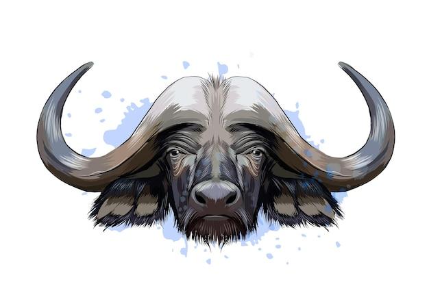 Bisonte, ritratto di testa di bufalo da una spruzzata di acquerello, disegno colorato, realistico.