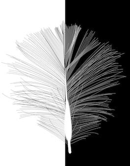 Piuma nera dell'uccello disegnata nell'illustrazione di vettore. eps10