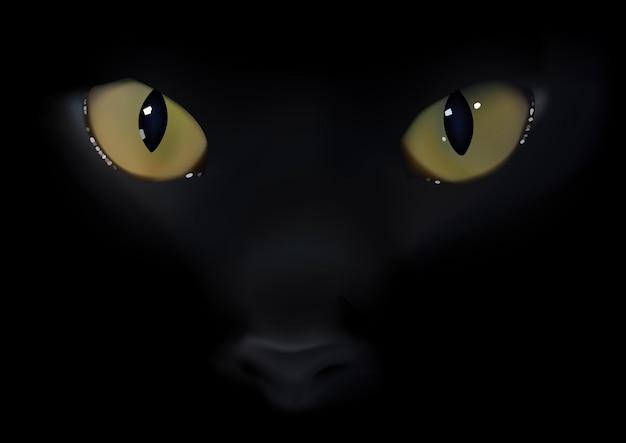Occhi di gatto nero con faccia su sfondo nero