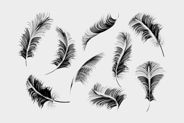 Raccolta di piume nere impostato su sfondo bianco.