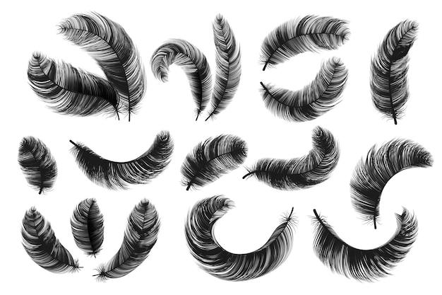 Piume nere. realistiche soffici piume di cigno, sagome di spoletta isolate vintage, piume roteate di angelo o uccello vettoriale