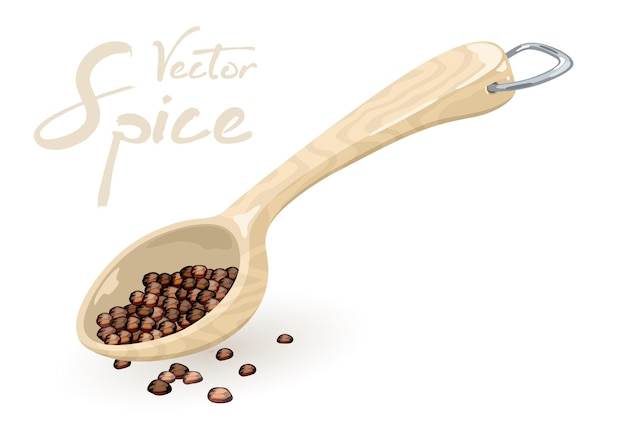 I chicchi di pepe nero o il pepe in grani sono misurati con un cucchiaio di legno o di plastica