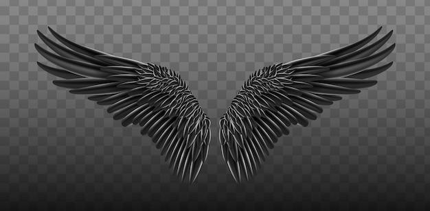 Ali realistiche nere. illustrazione disegno di ali di uccello.