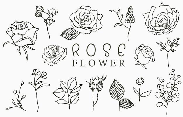 Collezione logo rosa nera con foglie illustrazione vettoriale per icona, logo, adesivo, stampabile e tatuaggio