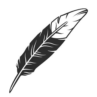 Piuma di uccello bianco e nero