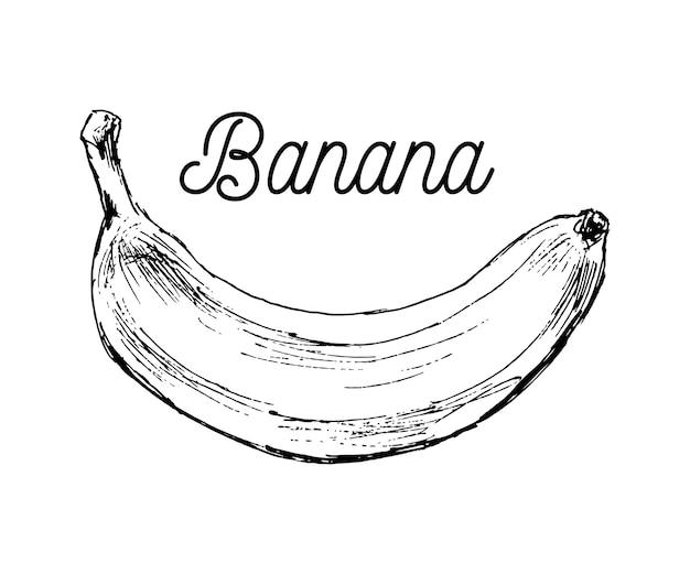 Bianco e nero fumetto illustrazione di banana frutta cibo