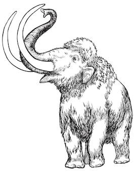 Schizzo disegnato a mano in bianco e nero di mammut su fondo bianco isolato illustrazione vettoriale.