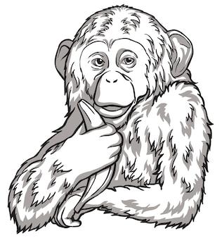 Scimmia in bianco e nero con una banana. illustrazione vettoriale. simboli del capodanno cinese