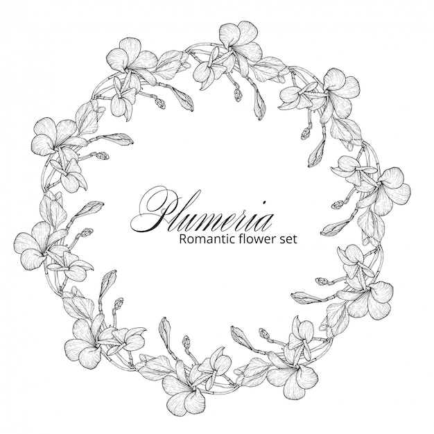 Fiori di plumeria in bianco e nero. ghirlanda di fiori.