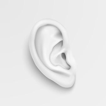 Primo piano realistico dell'orecchio umano in bianco e nero
