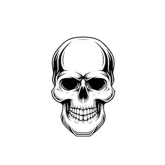 Illustrazione del cranio in bianco e nero