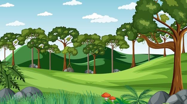 Prato in bianco alla scena diurna con vari alberi forestali