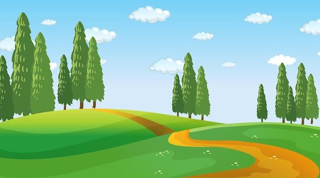 Scena del paesaggio del parco naturale in bianco durante il giorno