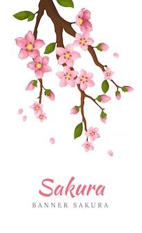 Sbocciare fiori di sakura. illustrazione di fiori che sbocciano