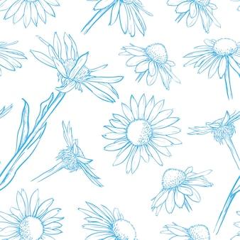 Modello senza cuciture floreale blu illustrazione vettoriale di camomilla disegnata a mano