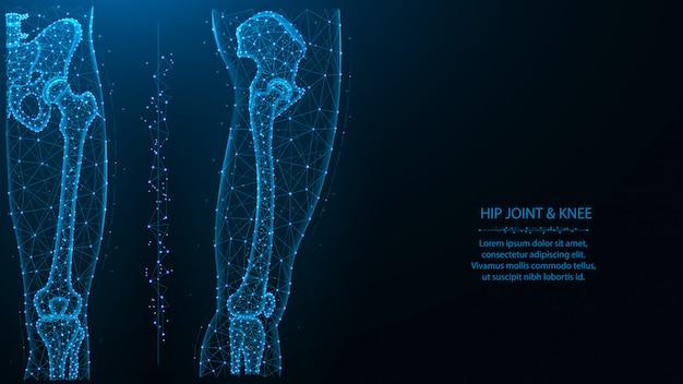 Illustrazione poligonale blu dell'articolazione dell'anca e del ginocchio, vista frontale e laterale