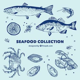 Collezione di frutti di mare blu Vettore Premium