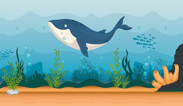 Animale marino balena blu nell'oceano, abitante del mondo del mare, simpatica creatura subacquea, habitat marino, fauna sottomarina del tropico