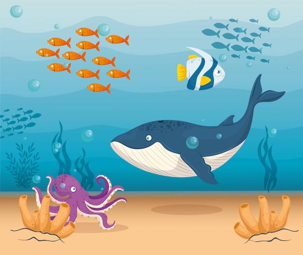 Animale marino balena blu nell'oceano, con pesci e polpi ornamentali, abitanti del mondo del mare, simpatiche creature sottomarine, habitat marino