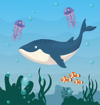 Balena blu e animali marini selvaggi nell'oceano, abitanti del mondo marino, simpatiche creature sottomarine, fauna sottomarina