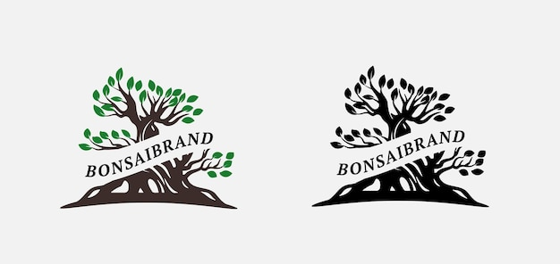 Modello di logo bonsai