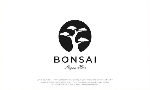 Logo design albero dei bonsai