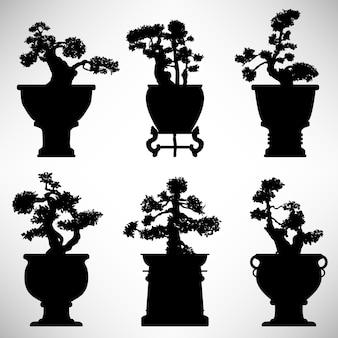 Bonsai albero pianta vaso di fiori.