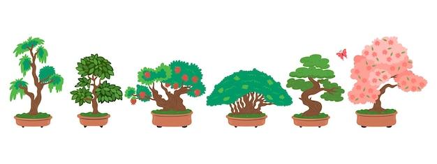 Alberi dei bonsai impostati isolati
