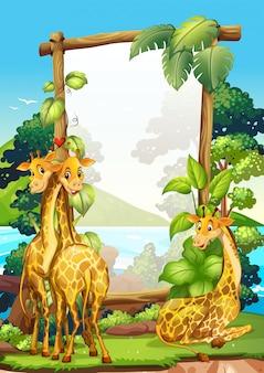 Disegno del bordo con tre giraffe nel parco