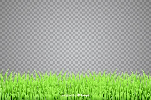 Confine di stile realistico di erba
