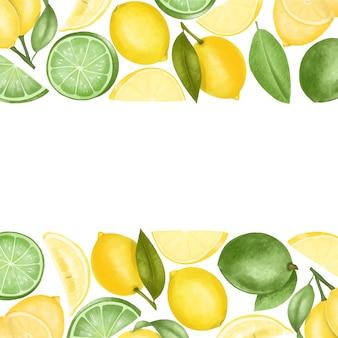 Bordi di limoni disegnati a mano e limette, illustrazione su un bianco